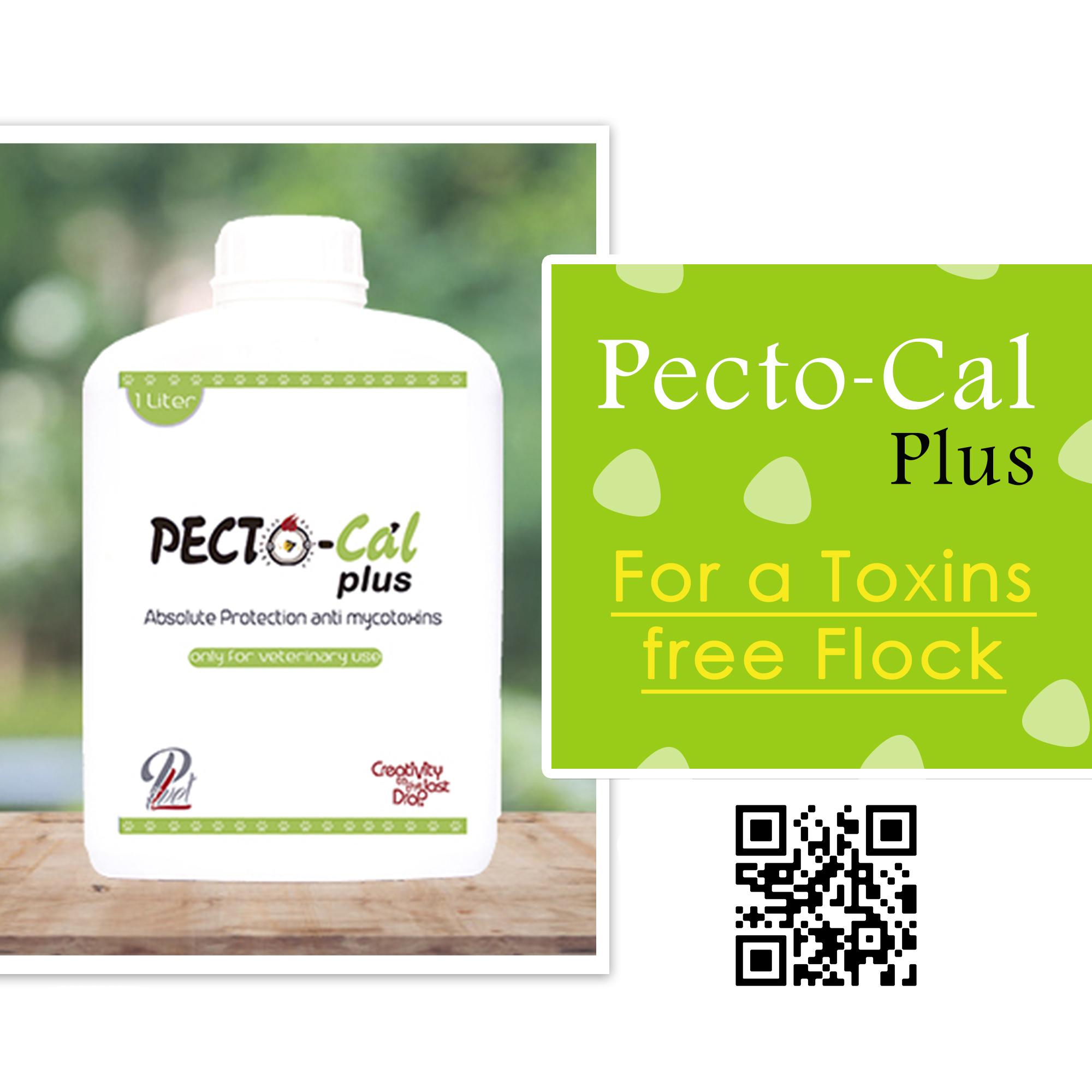 Pectocal plus