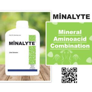 Minalyte